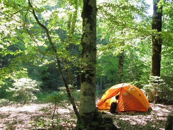 Fotoğraf: kazdaglariekoturizm.com