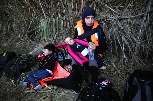 Yunanistan - Sığınmacılar