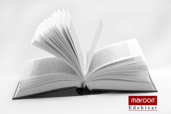 Maroon - Edebiyat