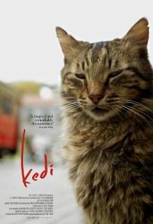Kedi_film_2016_ceyda-torun